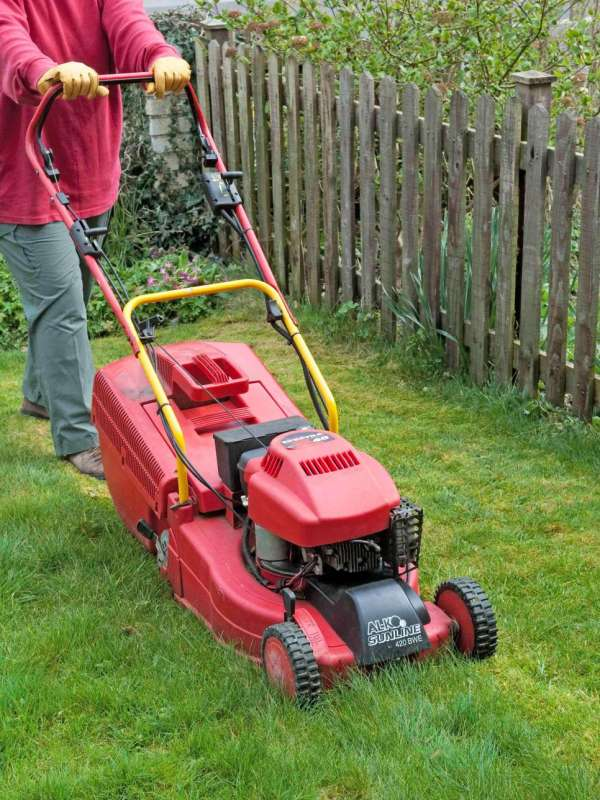 Lawn Care Services Near Me in Redwood Village