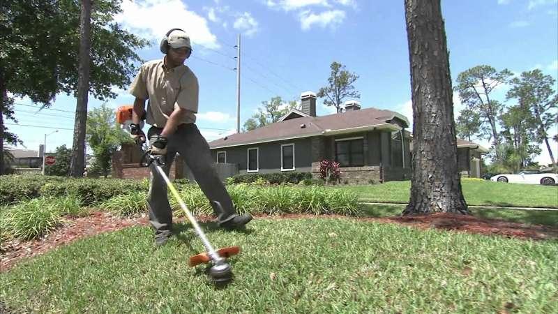 Lawn Service in Santa Ysabel