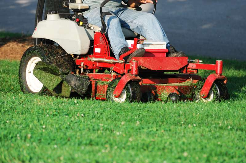 Lawn Care Companies in Hillcrest