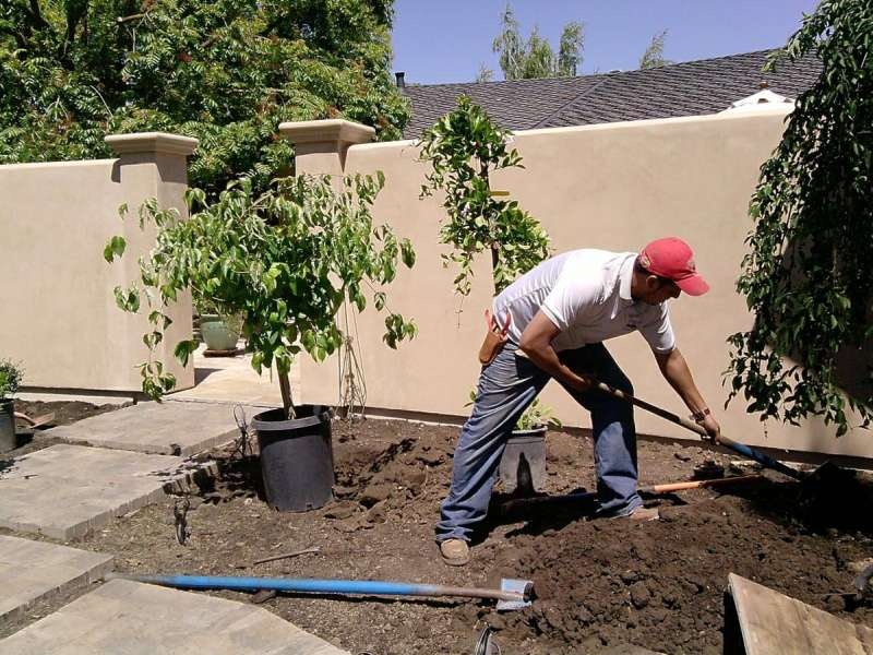 Landscaping Companies in Ocean Beach