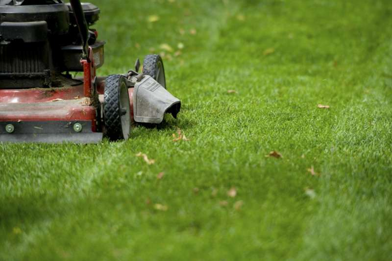 Commercial Landscaping in Paradise Hills