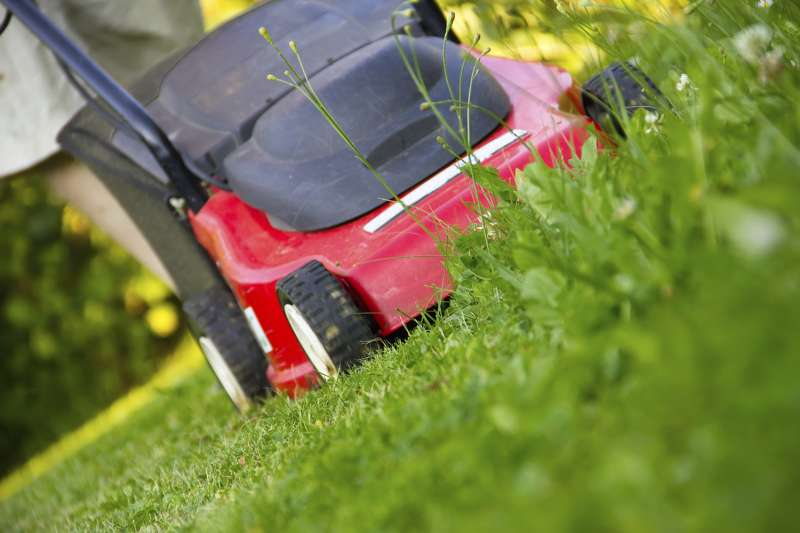 Lawn Maintenance in Ranchita