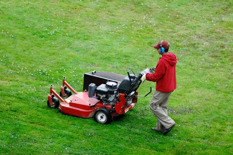 Landscaping Services in Rancho Bernardo