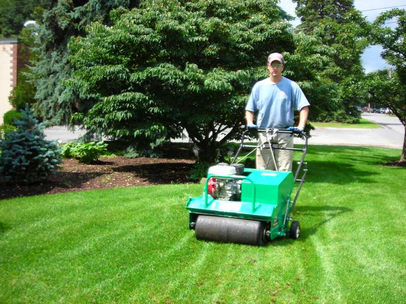 Lawn Care Near Me In Shelter Valley
