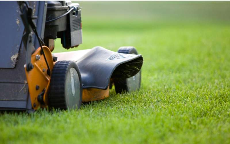 Lawn Mowing Services near Pala Indian Reservation