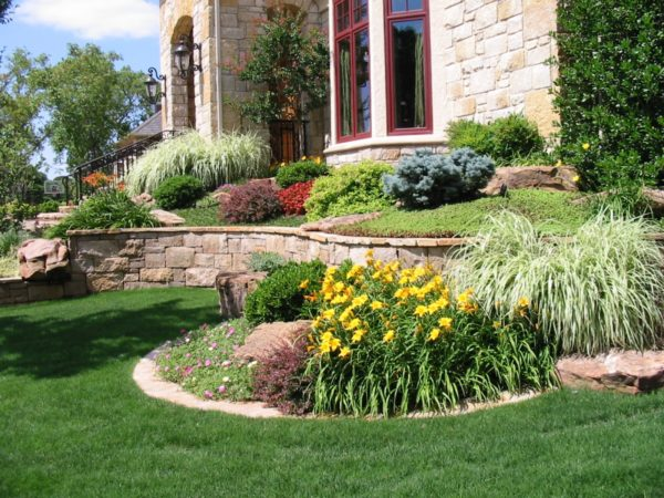 Finding A San Diego Lawn Care Service