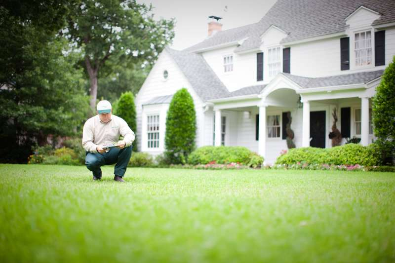 Landscaping Services Near Me In Fairbanks Ranch