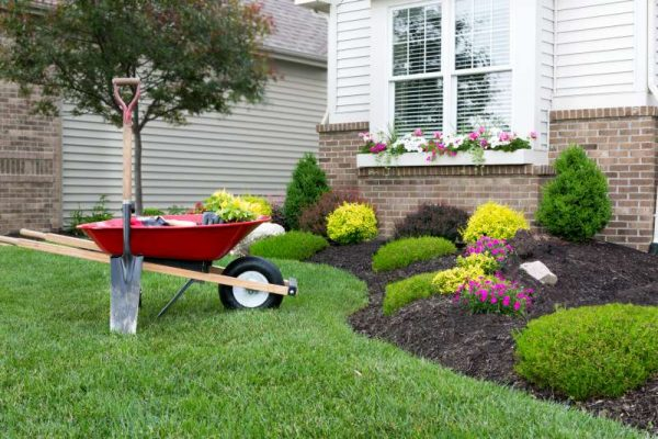 - Landscaping Services Near Me In Live Oak Springs