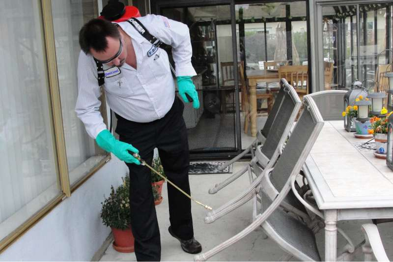 emergency pest control services in Borrego Springs