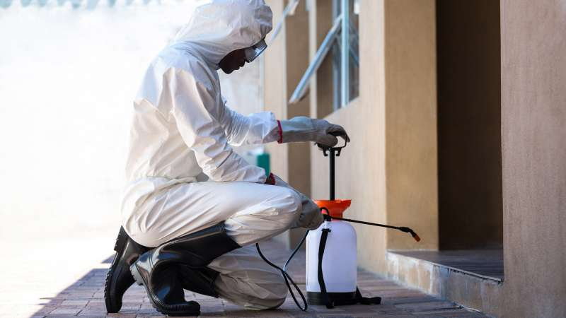 pest control pro in La Mesa
