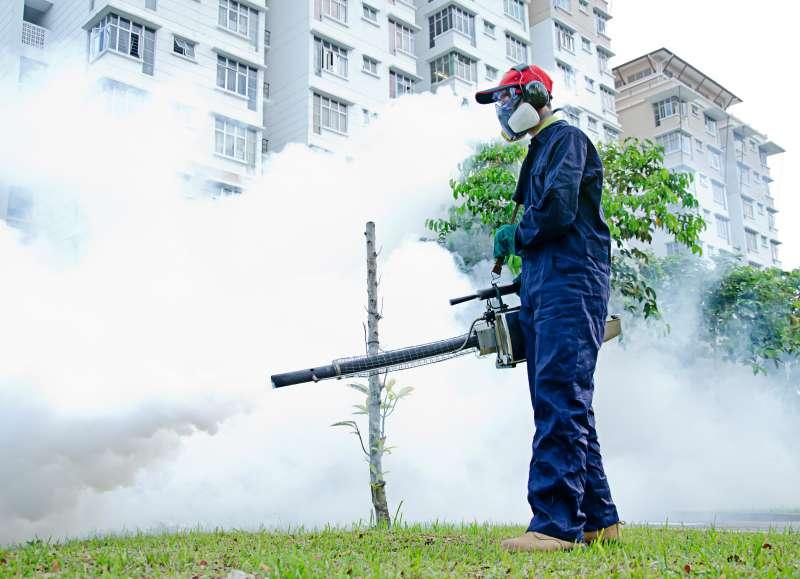 pest control expert in Skyline