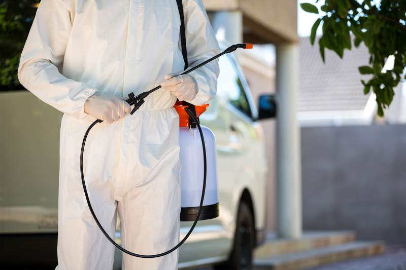 emergency pest control services in Canebrake