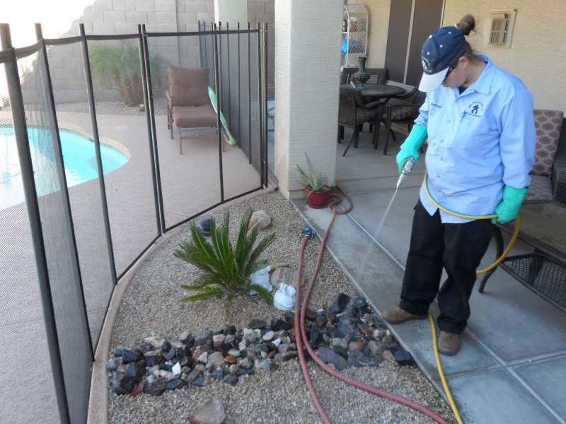 24 pest control in Barona Indian Reservation