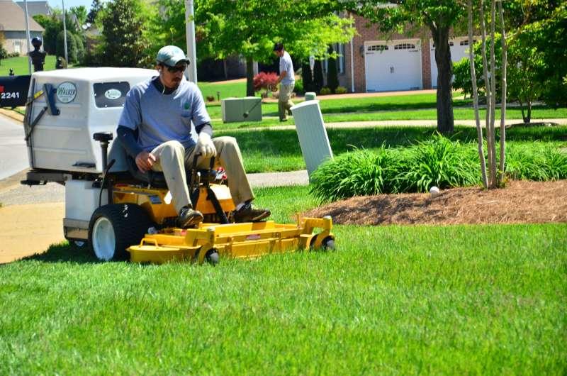 Lawn Mowing Service Near Me in Rolando on Backyard Landscaping Companies Near Me id=71401